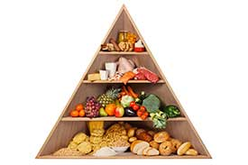 Food Pyramid Recommendations in Largo, FL